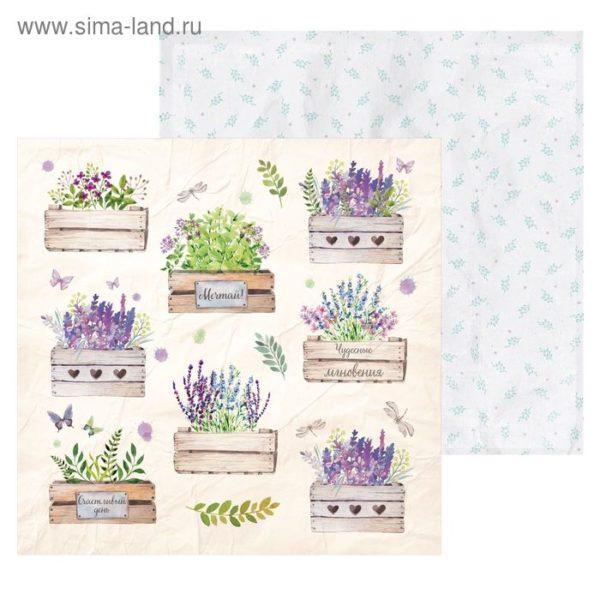 скрап бумага Ящики с цветами