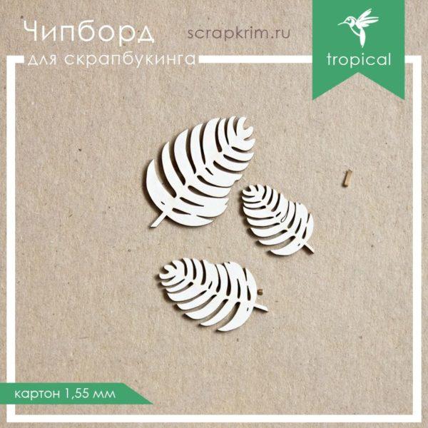 Чипборд Листья (набор 2)