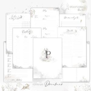 Электронные страницы для планнера Dreamer